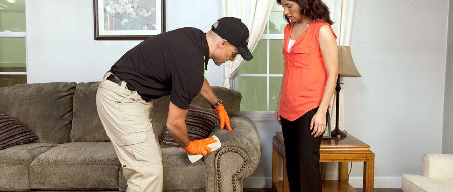 Sandusky, OH carpet upholstery cleaning